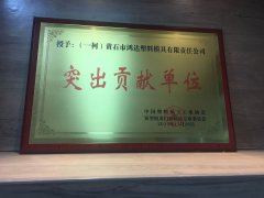 Outstanding contribution unit of China Plastics Processing I